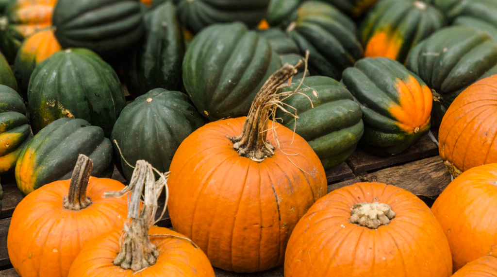 Frutta e verdura di stagione per mese Ottobre